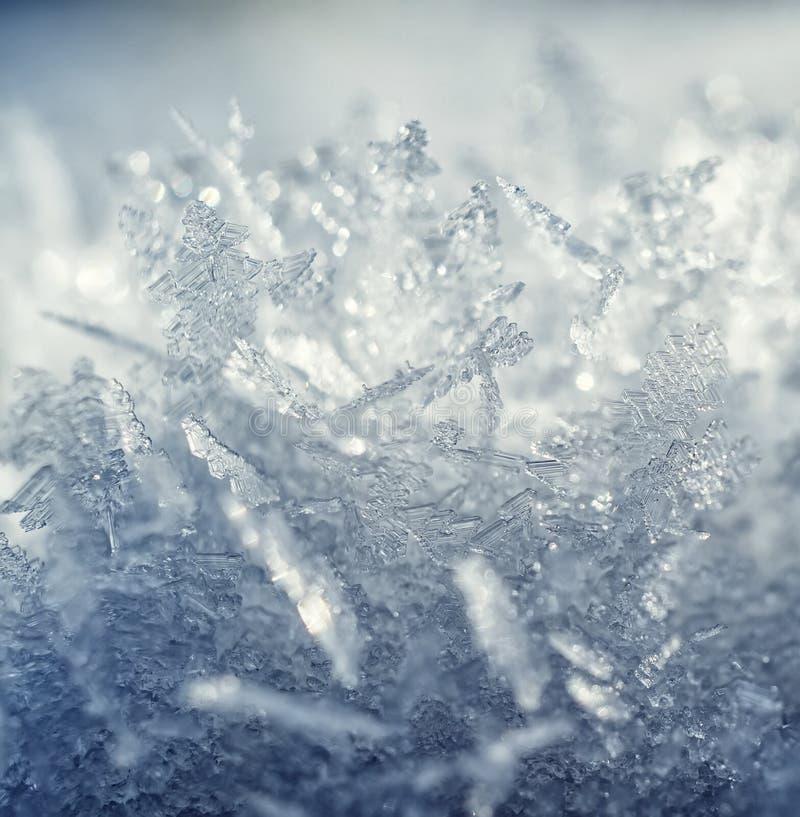 Cristales de Frost. imágenes de archivo libres de regalías
