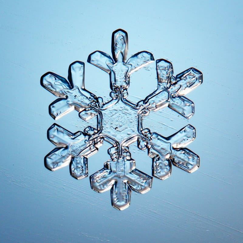 Cristales de hielo macros del copo de nieve fotos de archivo