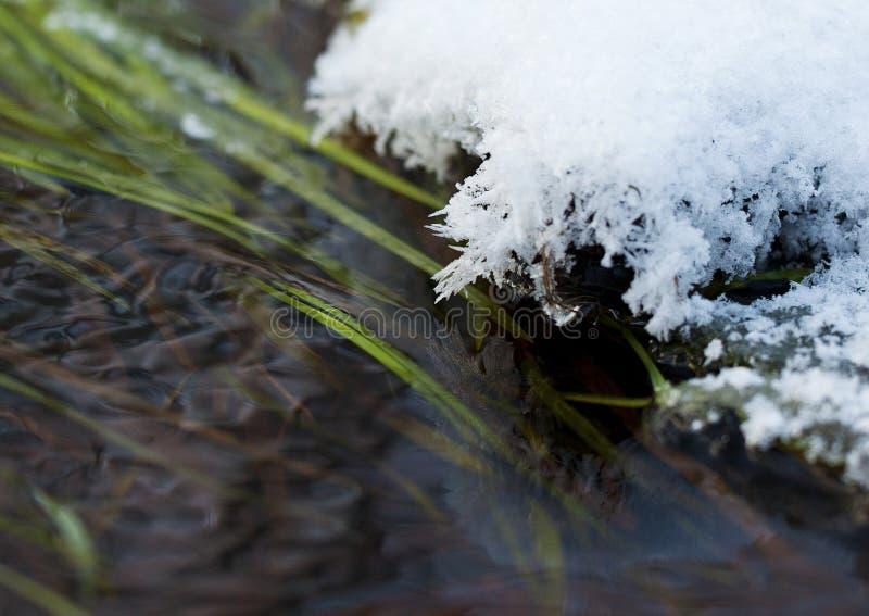 Cristales de hielo sobre el agua imagen de archivo