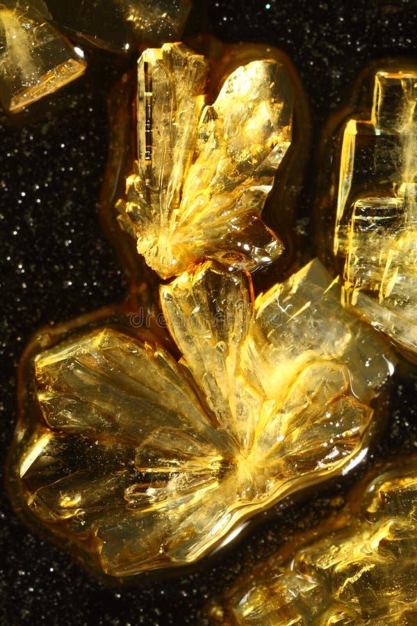 Cristales de oro del ácido ascórbico imágenes de archivo libres de regalías