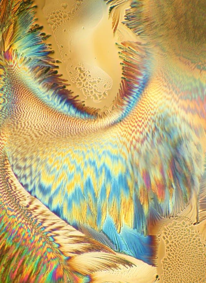 Cristales del ácido ascórbico imágenes de archivo libres de regalías