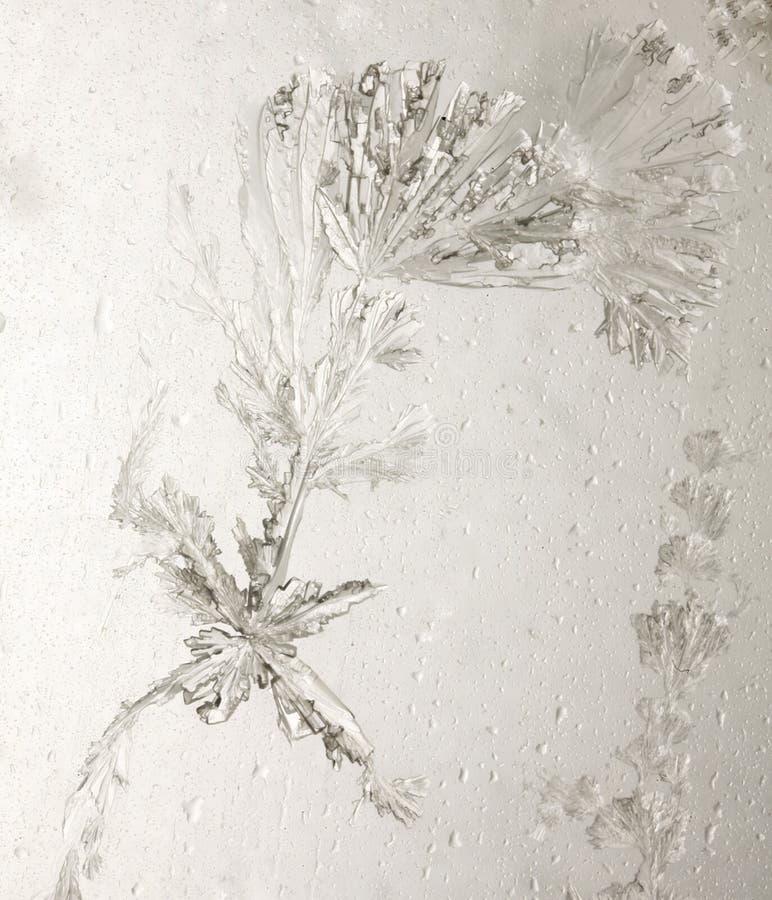 Cristales del ácido ascórbico fotografía de archivo libre de regalías