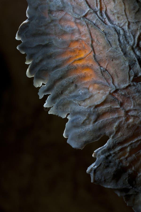 Cristalli in caverna fotografia stock libera da diritti