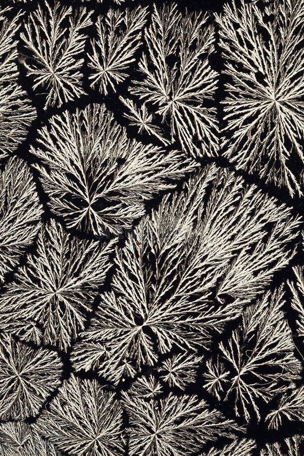 Cristalli dell'acido ascorbico fotografia stock