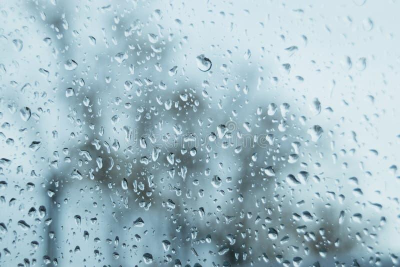 Cristallo con le gocce delle gocce di pioggia fotografia stock libera da diritti
