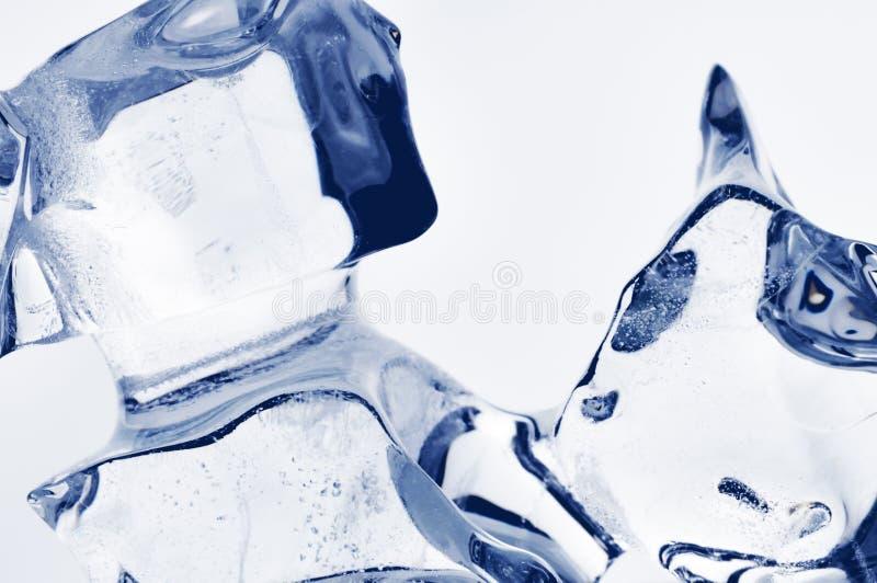 Cristaux de glace. images stock
