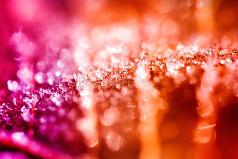 Cristaux de glace colorés abstraits photographie stock libre de droits
