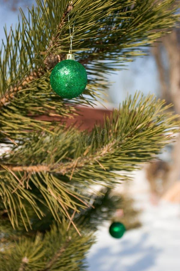 Cristmas-albero fotografia stock libera da diritti