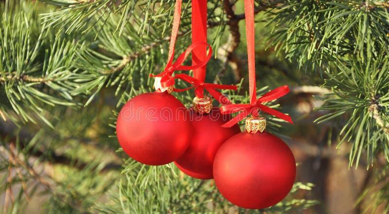 Download Cristmas Decoration Red Balls Stock Image - Image of light, elegant: 17085355