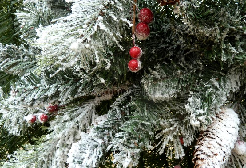 Cristmas trädfilial med snögarnering arkivbilder