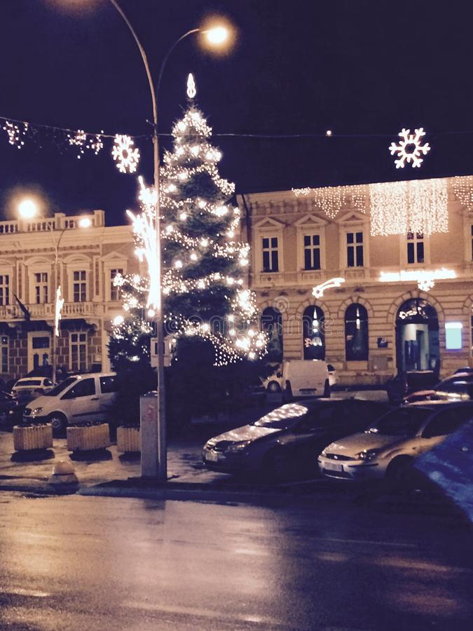 Cristmas Tree Square Slavonien night royalty free stock photography