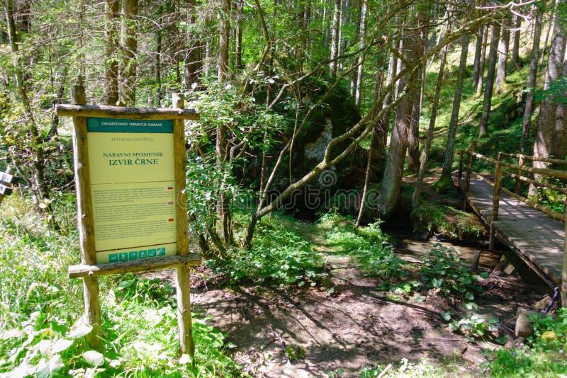 Crna spring in Logarska valley where the Savinja river originates stock photography