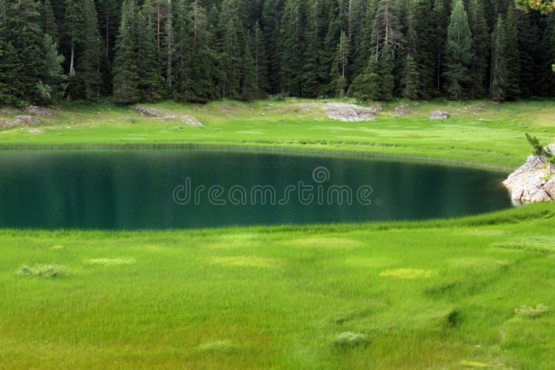 Crno Jezero (黑湖),杜米托尔国家公园国家公园,黑山03 库存照片