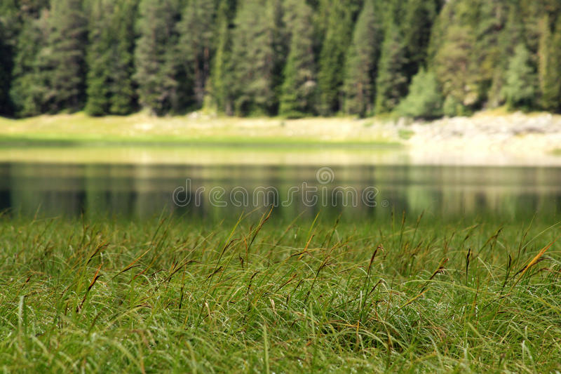 Crno Jezero (黑湖),杜米托尔国家公园国家公园,黑山06 库存照片