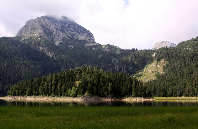 Crno Jezero (lago nero), parco nazionale di Durmitor, Montenegro 04 fotografie stock