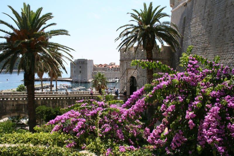 Croatia-Dubrovnik royalty free stock image