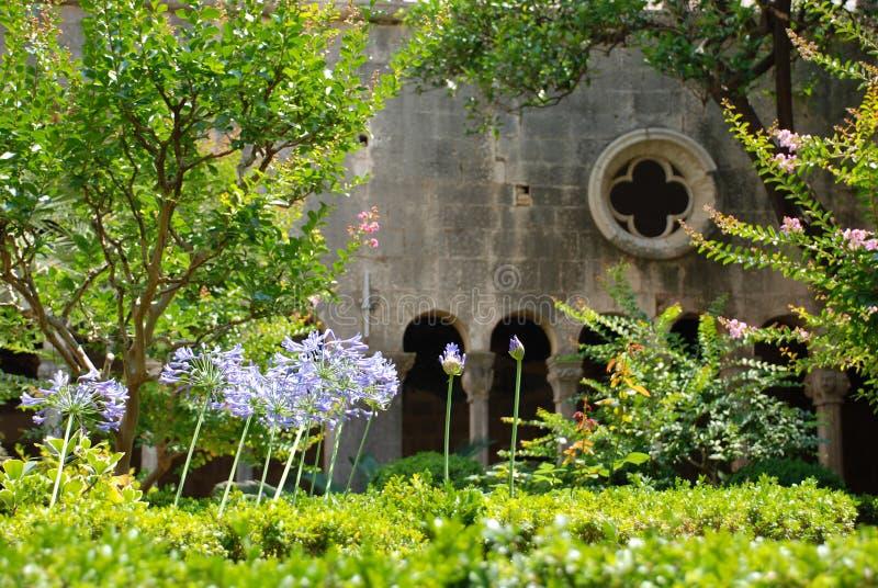 croatia dubrovnik franciscankloster royaltyfri fotografi