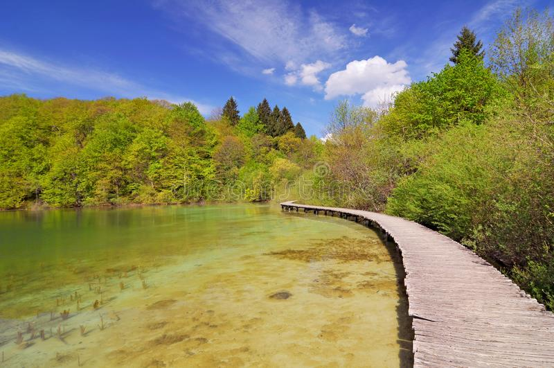 Croatia, Plitvicka Jezera, Plitvice Lakes National Park, Plitvice Lakes National Park royalty free stock images