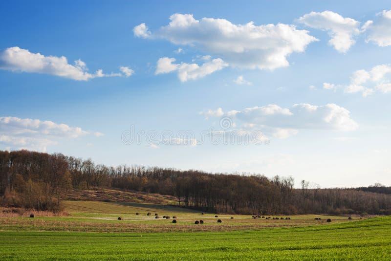 Croatian village countryside scenery royalty free stock photo