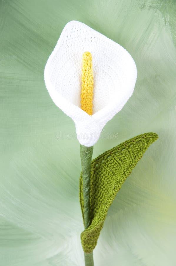Crochet da flor do Calla imagem de stock royalty free
