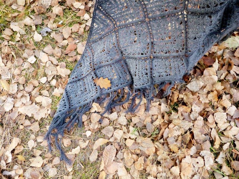 Crocheted gray shawl on autumn leaves. Square motifs, fringe stock photos