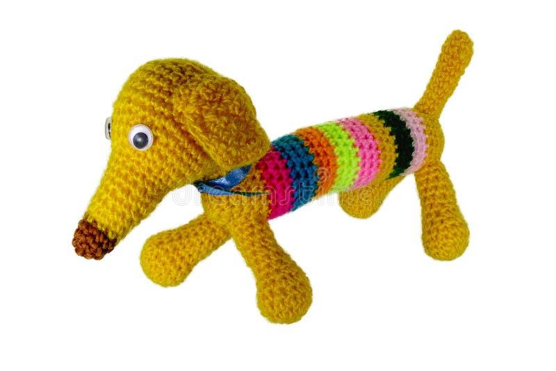Crocheted mång--färgad hund med en lång näsa royaltyfri bild