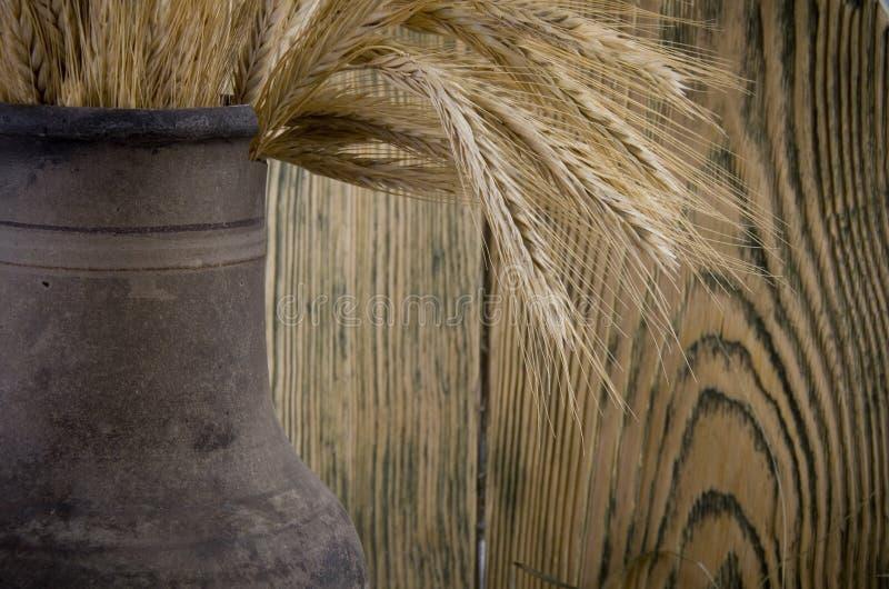 Crock com um grupo das orelhas do trigo imagens de stock