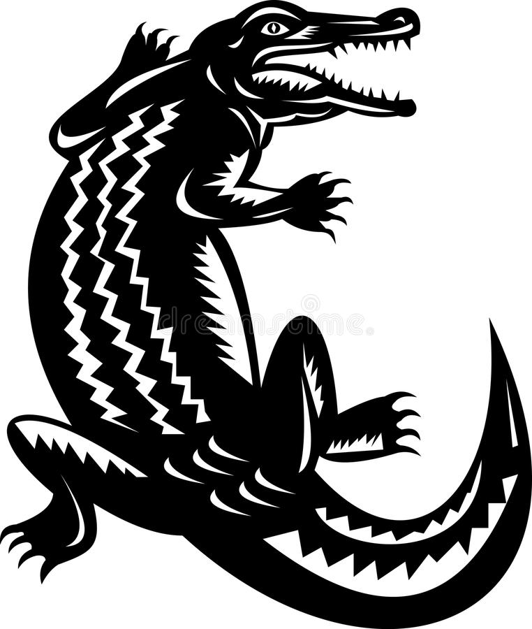 Download Crocodile stock vector. Image of white, woodcut, illustration - 11914907