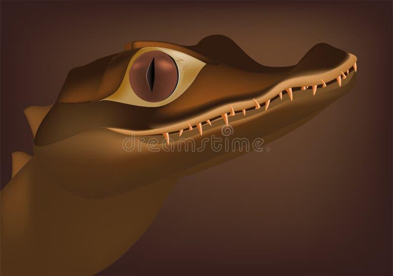 Crocodile. Very kind crocodile amphibian anger aquatic stock illustration