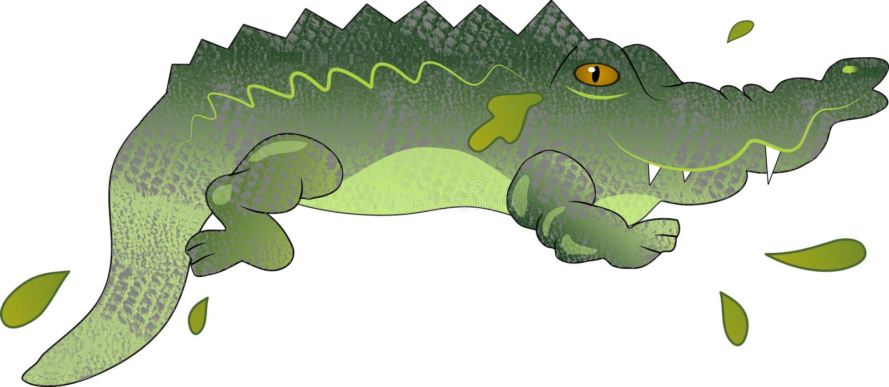 Crocodile royalty free illustration