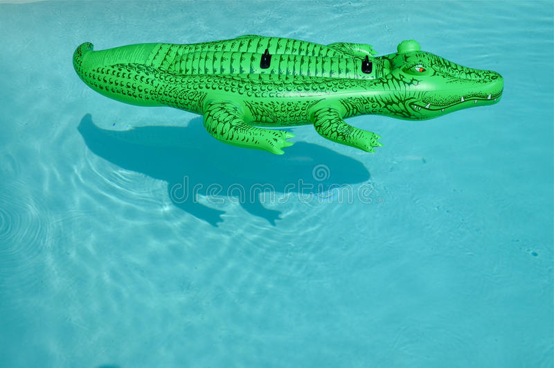 Download Crocodile stock image. Image of toys, water, shadow, sunny - 28390617