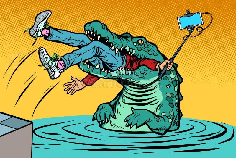 Crocodile attacked a man. Dangerous selfie. Comic cartoon pop art retro vector illustration drawing royalty free illustration