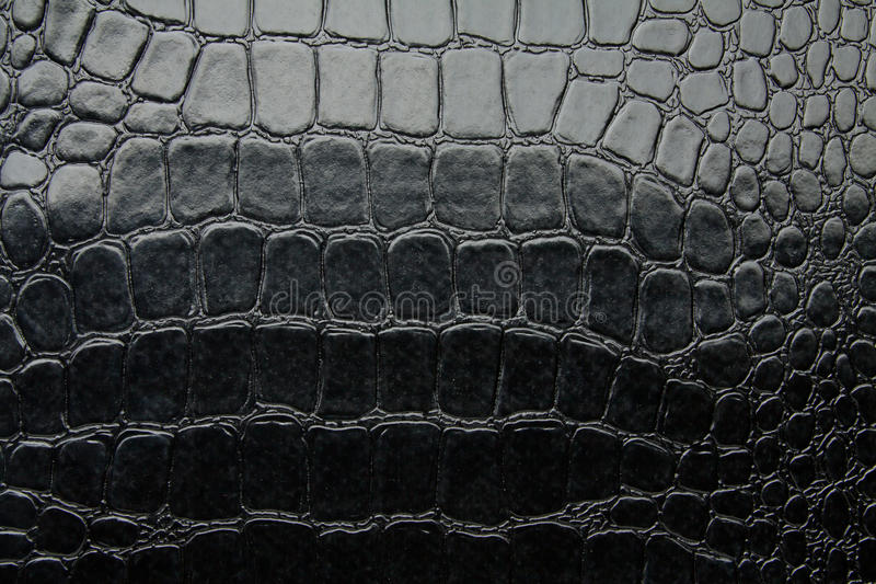 Crocodile Leather Black Glossy Artificial Texture Stock ...