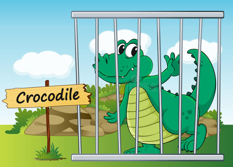 Download Crocodile in cage stock vector. Image of outdoor, illustration - 26112471