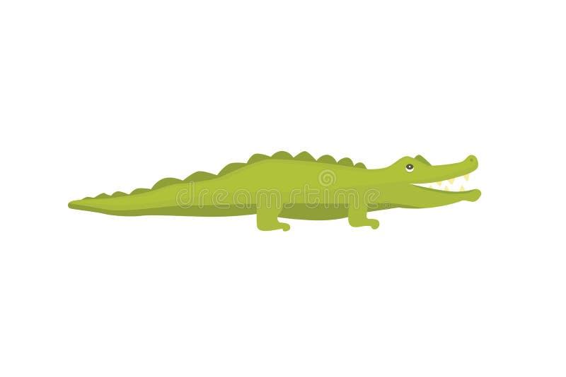 Crocodile Cute Character. Aligator vector cartoon illustration royalty free illustration
