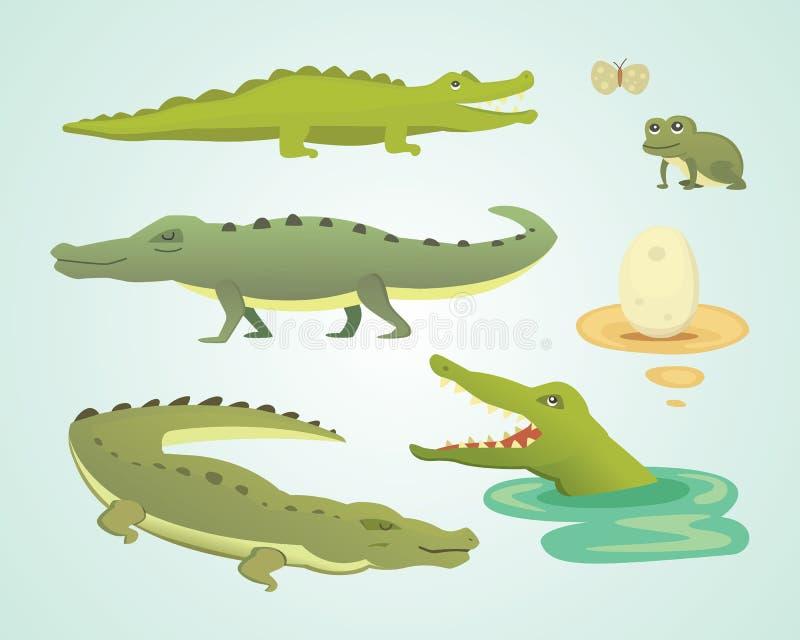 Crocodile Cute Character set. Aligator vector cartoon illustration vector illustration