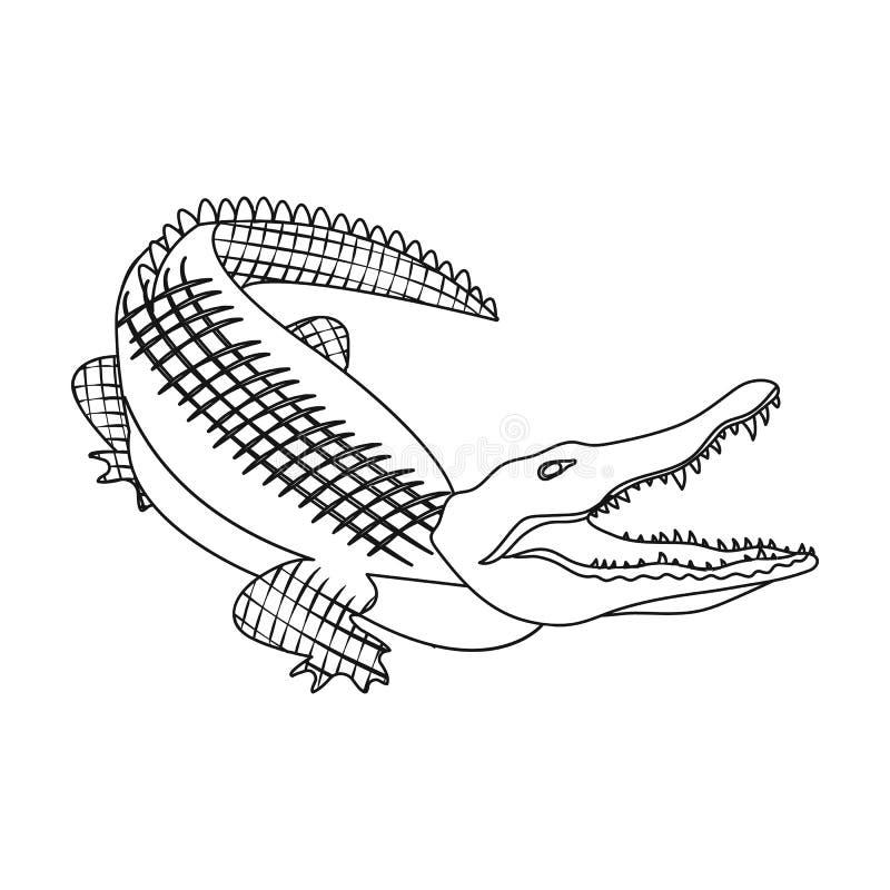 Crocodile Dangerous Predator Reptile Nile Crocodile Single Icon