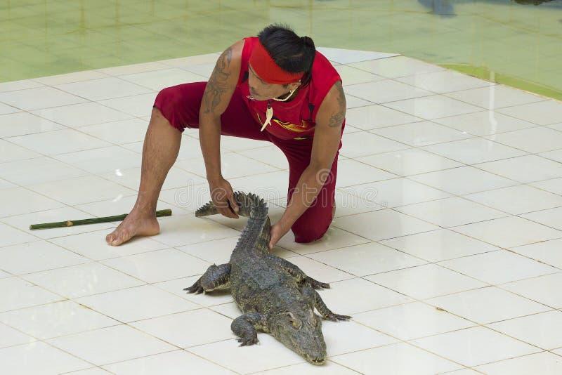 Crocodile de taquinerie d'homme thaïlandais