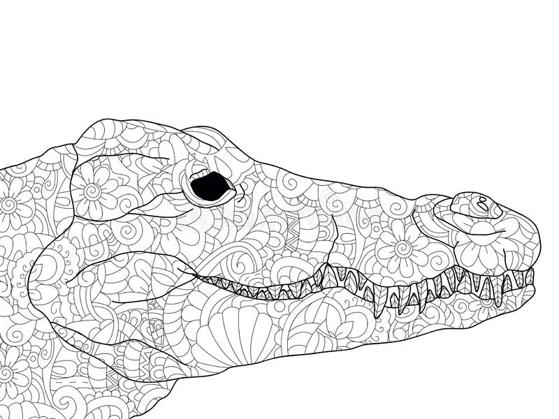 Crocodile head coloring antistress, drawings black lines and white background. Nature, flowers. Raster. Illustration royalty free illustration