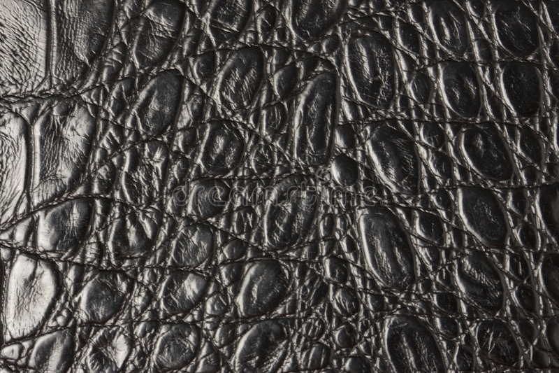 Crocodile leather texture. To serve as background royalty free stock photo
