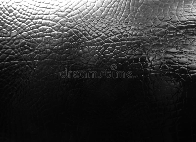 Crocodile leather texture stock photo