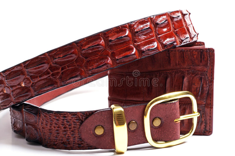 Crocodile leather wallet and belt. Crocodile skin leather wallet and belt on a white background royalty free stock images