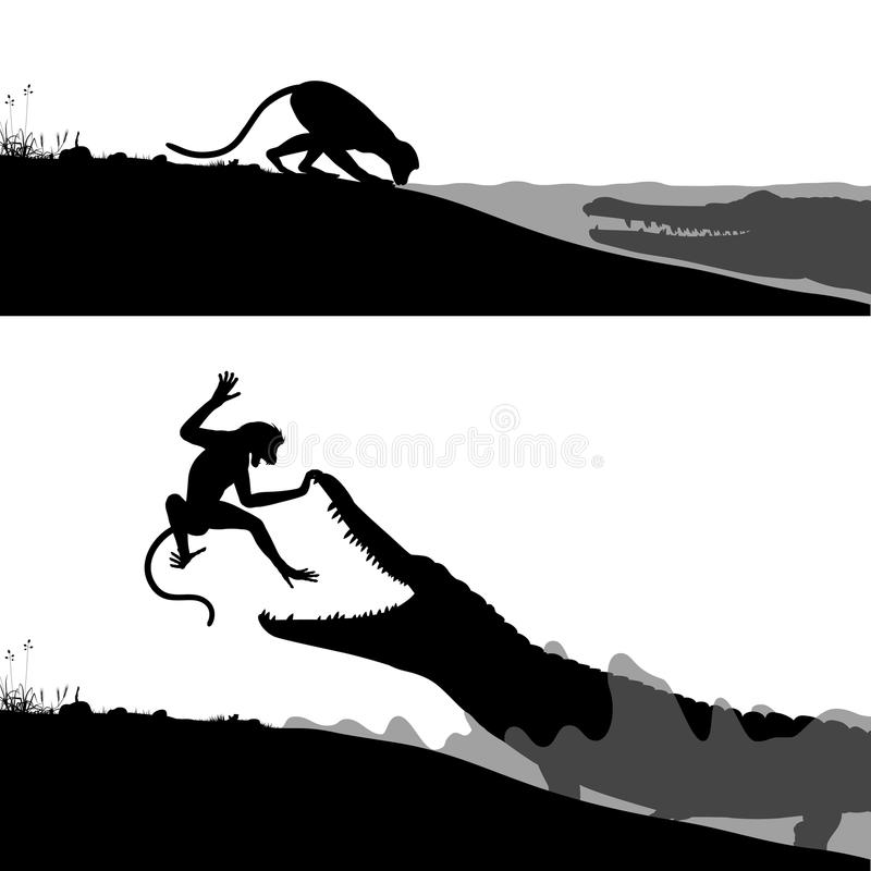 Crocodile and monkey. Editable vector silhouettes of a crocodile hunting a thirsty monkey stock illustration