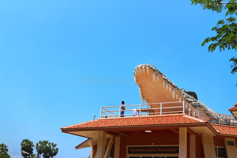 Crocodile mortar opens its mouth with large teeth.  Beautiful blue sky background stock photography