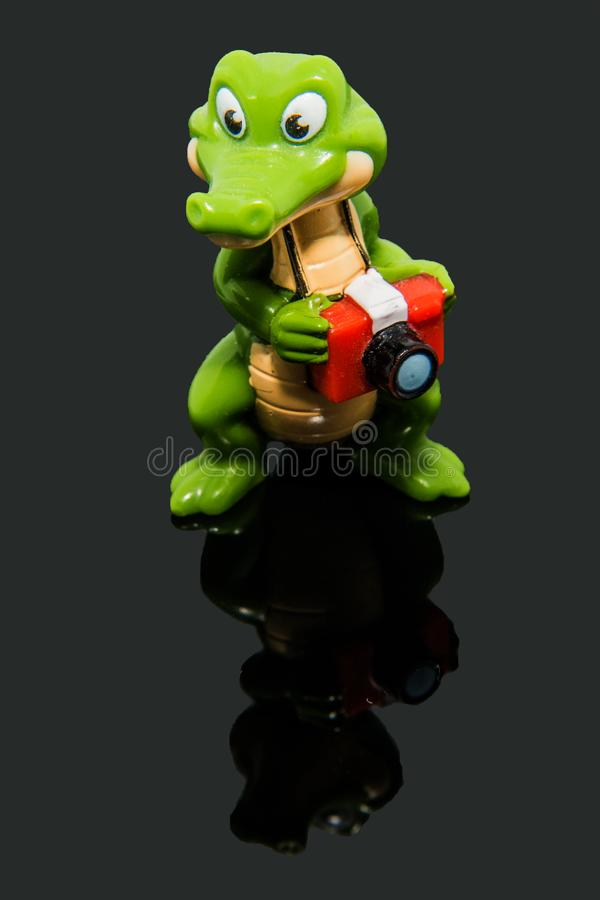 Crocodile photographer in studio with reflection stock images
