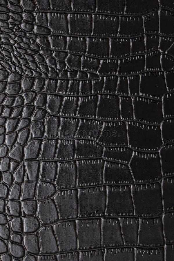 Free Crocodile Skin Royalty Free Stock Photos - 18104478