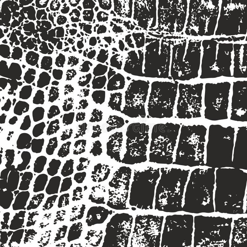 Crocodile skin. Vector texture. Imprint stock illustration
