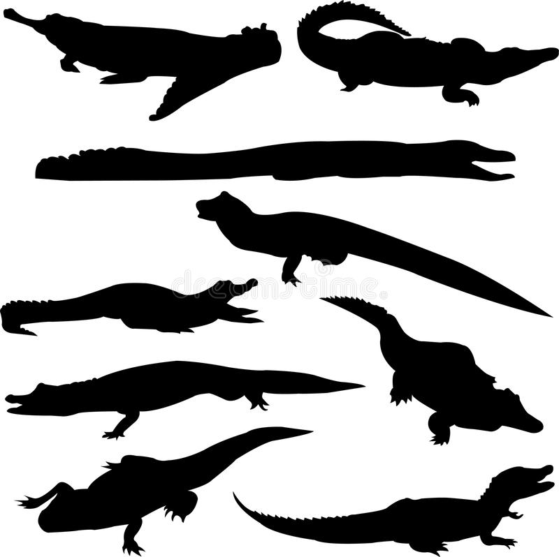 Download Crocodiles From Around The World Stock Vector - Image: 11018119