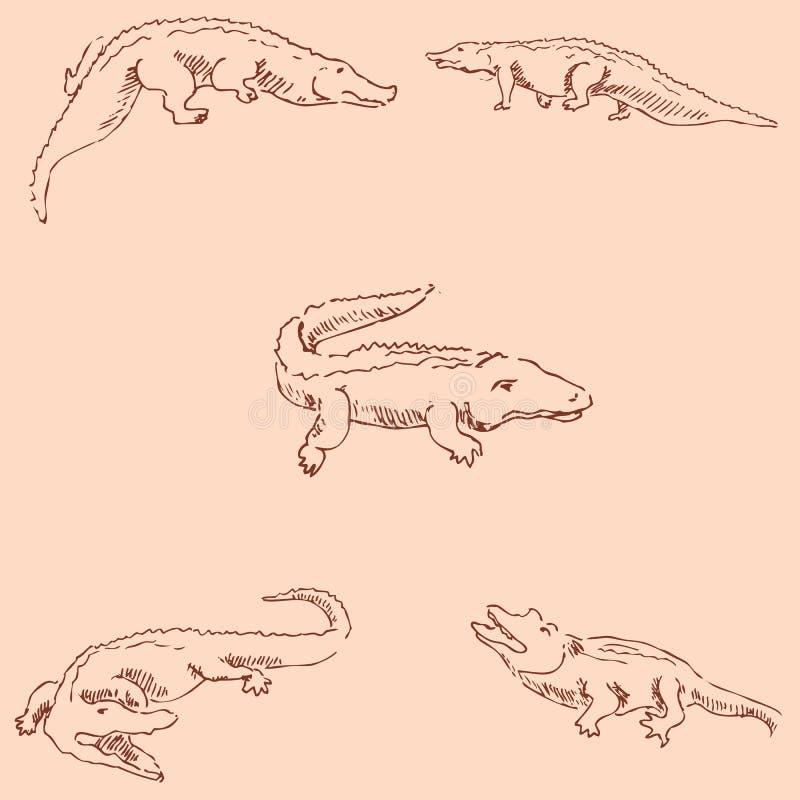 Crocodiles. Sketch pencil. Drawing by hand. Vintage colors. Vector. Crocodiles. Sketch pencil. Drawing by hand. Vintage colors Vector image royalty free illustration