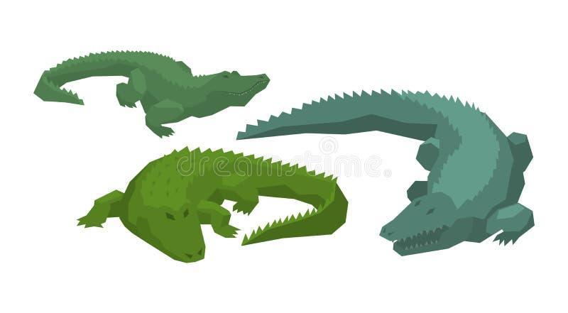 Crocodilian tecken för krokodilvektortecknad film av den animalistic uppsättningen för grön alligatorköttätareillustration av far vektor illustrationer